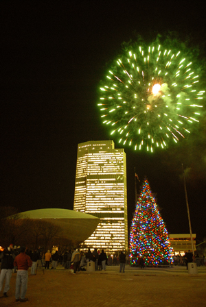 new york state tree. 2010 Tree Lighting SEFCU